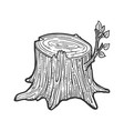 tree stump with sprout sketch vector image