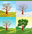 cartoon tree seasons set on a nature landscape vector image