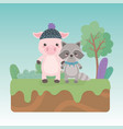 cute and little raccoon and pig in field vector image