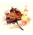 grunge autumn vector image vector image