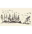 Hand drawn landscape fir forest migratory birds vector image