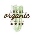 local organic natural food background vector image vector image