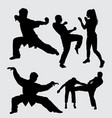 martial art male and female sport silhouette vector image vector image