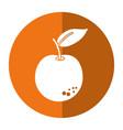 orange citrus fruit icon shadow vector image vector image