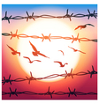 barbed wire and flying birds vector image vector image