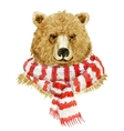 Brown bear wearing a scarf vector image vector image