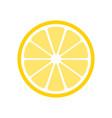 citrus slices vector image vector image