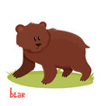 cute brown bear in cartoon style vector image