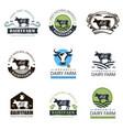 dairy farm labels set vector image