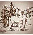 hand drawing leopard landscape vintage vector image vector image