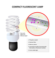 How do CFLs work vector image