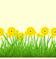 spring background with green grass and yellow flow vector image vector image