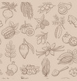 superfood seamless pattern vector image vector image