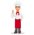 young professional chef vector image