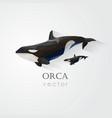 3d origami low polygon orca vector image vector image