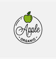 apple fruit logo round linear logo green apple vector image vector image