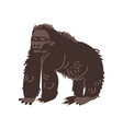 black gorilla monkey african animal vector image