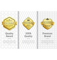 exclusive high quality awards premium brand set vector image vector image