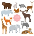 Wild animals set Fox rhino elephant bear vector image vector image