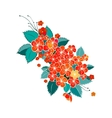 Blossom red flower vector image vector image