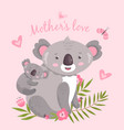 cute koala animal mom hugging baby australia vector image