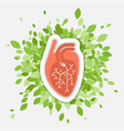 flat - human heart with green vector image