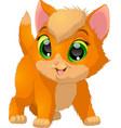 funny kitten baby vector image