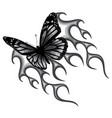 monochromatic a butterfly vector image