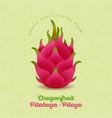 pitaya red ripe dragon fruit vector image