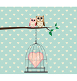 Couple Owl on Tree and Heart Love In Cage vector image