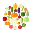 set fresh healthy vegetables made in flat style vector image vector image