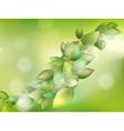 Spring or summer season abstract nature EPS 10 vector image