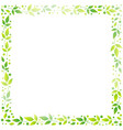 square frame of green leaves on white vector image vector image