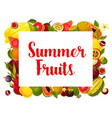 summer fruit poster of tropical fruits vector image vector image