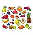 Cartoon berries and fruits pineapple grapes pear