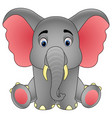 cute baby elephant sitting isolated on white backg vector image vector image