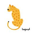 cute orange leopard on white background vector image vector image