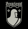 knightly design knight templar and medieval vector image