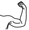 male arms with flexed biceps muscles vector image