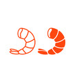 shrimp seafood vector image vector image