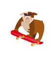 small dog on skateboard vector image vector image