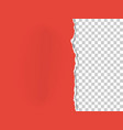 a piece of paper with the torn part on the right vector image vector image