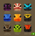 animal faces for app icons-tree frogs set vector image