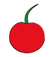 cherry fruit isolated icon vector image