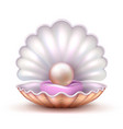 open oyster sea shell with valuable pearl isolated vector image