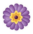 purple flower decoration vector image vector image