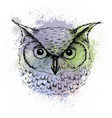 sketch of owl head on a background of colored vector image