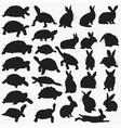 tortoise rabbit silhouettes vector image