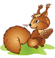 squirrel pine cone vector image