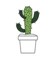 color sections silhouette of cactus of three vector image vector image